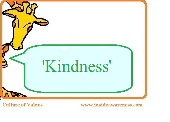 the value of kindness The core value after 'kindess' needs to be more kindess, followed by a range of other ways we can make sure patients live well in hospital and leave healed and recovered, live well at home, and live happily and healthily in all settings.